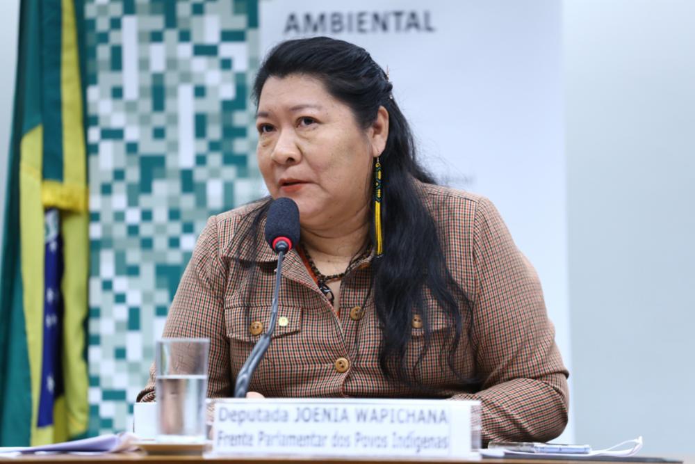 """Joenia Wapichana: """"Governo deve combater violações em terras indígenas antes de propor mineração"""""""